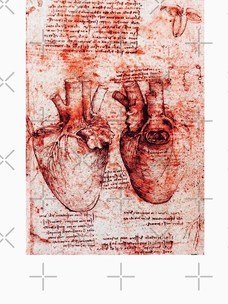 Heart And Its Blood Vessels. Leonardo Da Vinci, Anatomy Drawings Red ...