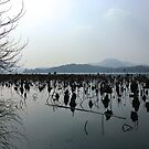 West Lake, Hangzhou, China by Simone Maynard