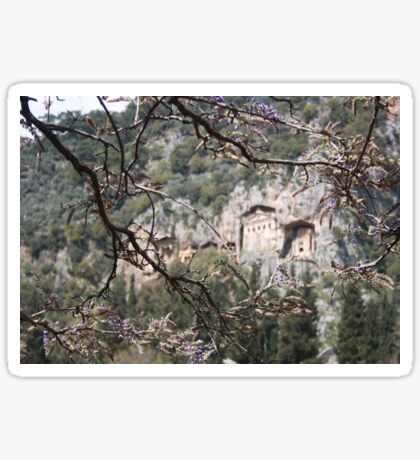 Wisteria Buds Surrounding the Lycian Tombs Dalyan Sticker