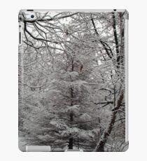Snow Tree iPad Case/Skin