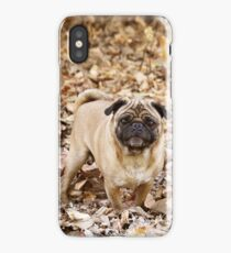 Adorable pug in the leaves iPhone Case/Skin