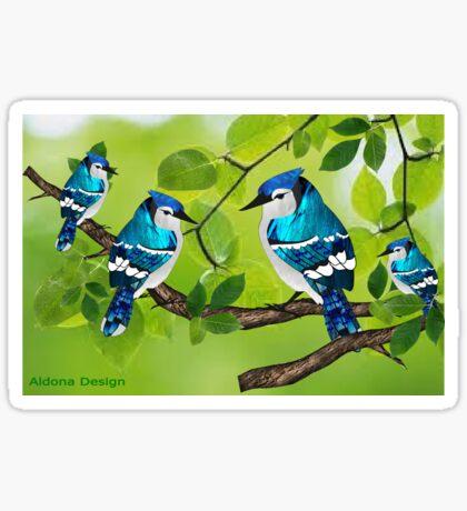 Blue jays (3755 views) Sticker