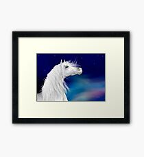 Star Gazer .. White Stallion Framed Print