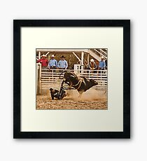 Rodeo Cowboy is Thrown from His Bull Framed Print