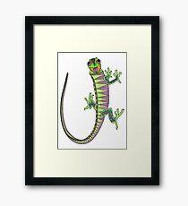 Crazy climbing lizard Framed Print