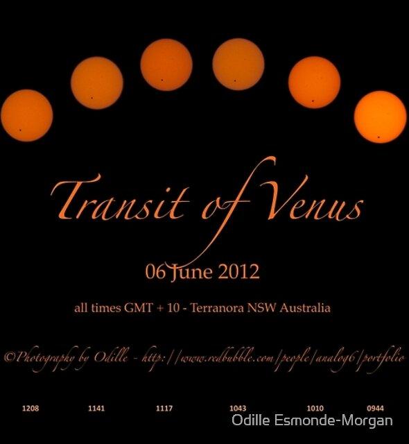TRansit of Venus - Once in a Lifetime by Odille Esmonde-Morgan