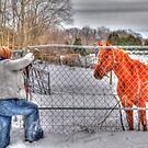 Lina and the Horse HDR by Kim McClain Gregal
