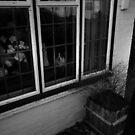 At home by Matt Mawson