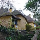 Cottage by frogs123