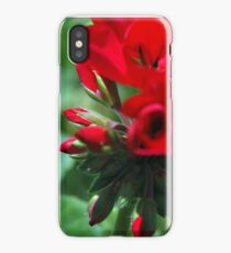 Red & Green. iPhone Case