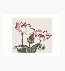 Three Lotus Art Print