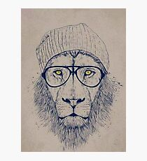 Hipster Lion Photographic Print