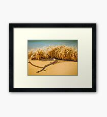 Beach Slam Dunk Framed Print