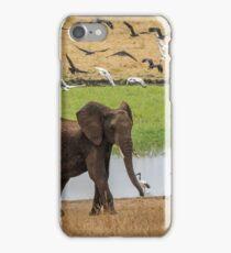 Tarangire Wetland Elephant Flyby iPhone Case/Skin