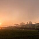 A misty sunset  by Lynne Morris