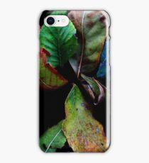 Falling Leaves  iPhone Case/Skin