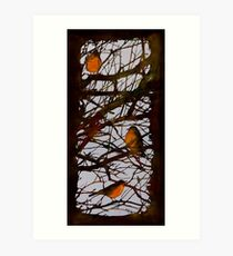 Spring Robins Gather Art Print