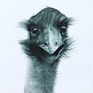 G'day. (Emu) by Simone Maynard