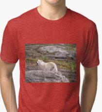 Loup Tri-blend T-Shirt