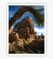 Desert Framing, Joshua Tree National Park, CA 2016 Sticker