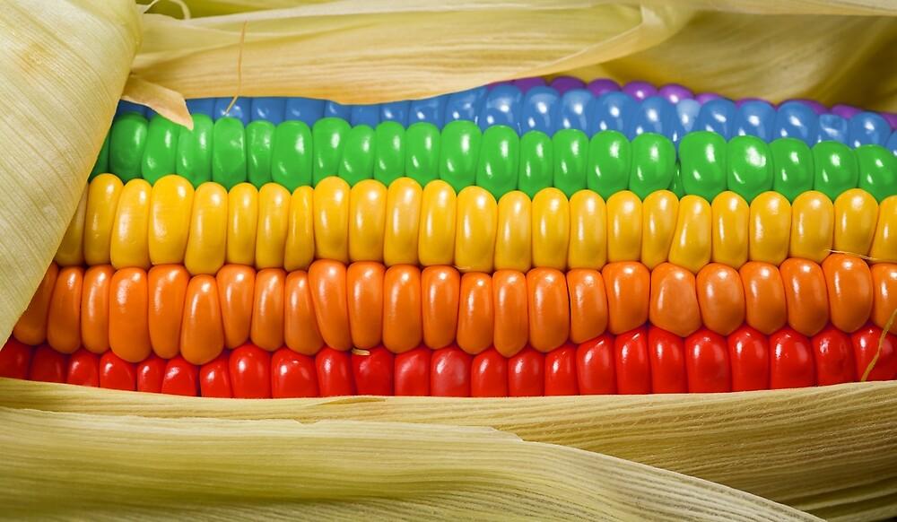 """Rainbow Corn"" by Kitty Bitty | Redbubble"