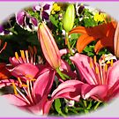 Riot of Colour - Opening Lily Buds Vignette by BlueMoonRose