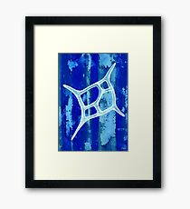 Silicoflagellate Framed Print