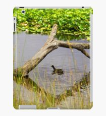 Ducking under natural bridge iPad Case/Skin