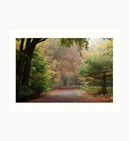 Dreamy Paths of Autumn Gold Art Print
