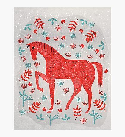 The Red Horse Photographic Print