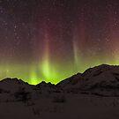 Night Lights # 4 by akaurora