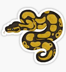 Ball/Royal Python - Normal Morph Sticker