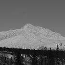 Mount McKinley by akaurora