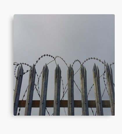 Razor-wire fence Canvas Print