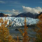 Trail With A View (Matanuska Glacier) by akaurora