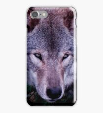 Loup Gris iPhone Case/Skin