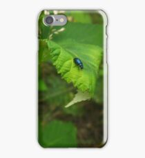 Bramble beetle  iPhone Case/Skin