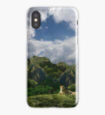 4109 iPhone Case