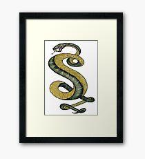 Tunnel Snakes Rule! Framed Print