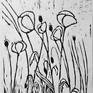 Poppy by Tony Elliott