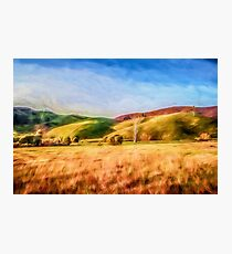 Sunset Field       (GO) Photographic Print