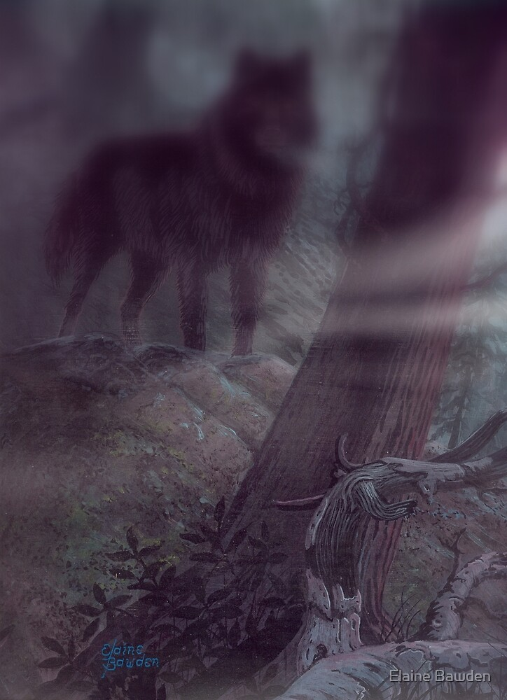 There In The Moonlit Fog A Dark Wolf   by Elaine Bawden