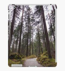 Bavarian Alps Path - 2/4 iPad Case/Skin