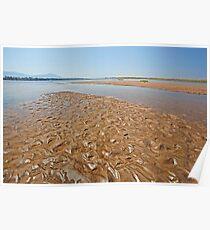 Zambezi River Poster