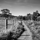 The Pennine Way by domediart