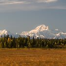 Denali ~ Raw, Wild and Unpredictable by akaurora