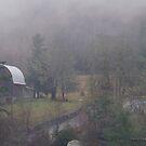 Pacific Northwest winter day by Rainydayphotos
