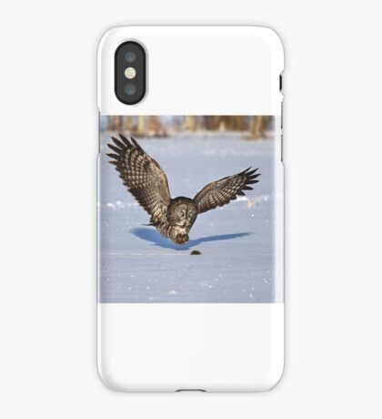 Great Grey owl catches a mouse iPhone Case/Skin