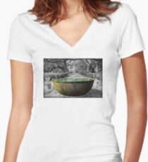 Oak Alley Plantation Sugar Cane Kettle Women's Fitted V-Neck T-Shirt