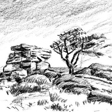 Saddle Tor, Dartmoor by BarnabyEdwards